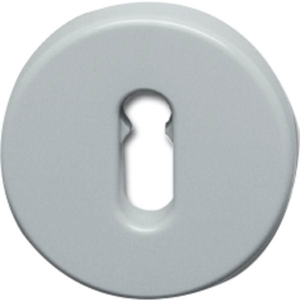 Klíčové rozety ploché HEWI 306.23, středně šedá